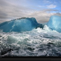 blue-iceberg-national-geographic-wallpaper
