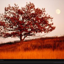 shenandoah-moon-national-geographic-wallpaper