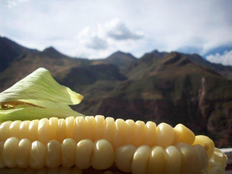 comida_peruana